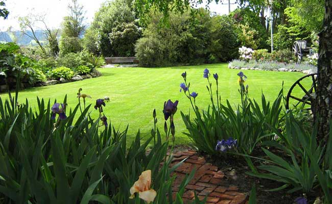 Guests are welcome to stroll through our Otago recognised garden